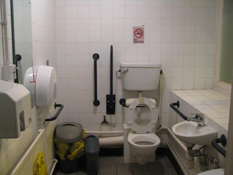 how to toilet train a ca